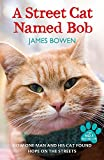 A Street Cat Named Bob: How one man and his cat found hope on the streets [Lingua inglese]